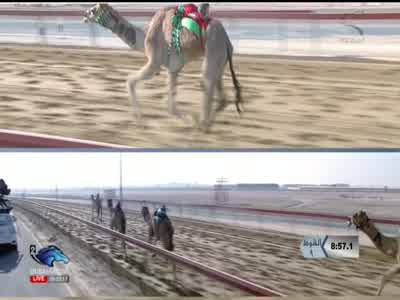Dubai Racing 2