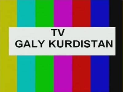 TV Galy